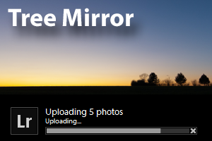 Tree Mirror 300x200
